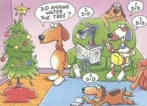 christmas_tree_dog